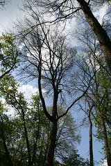 IMG_7909 (krissos.photography) Tags: sky sunlight nature minnesota clouds landscape photography minneapolis partlycloudy naturephotography 2015 minnehahacreek minneapolisminnesota seasonspring mostlysunny monthmay