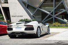 Lamborghini Aventador LP700-4 Roadster (Andre.Siloto) Tags: road brazil italy white car brasil italia sãopaulo bull exotic sp paulo lamborghini bianco são roadster worldcars aventador lp700 lp7004 brasilemimagens