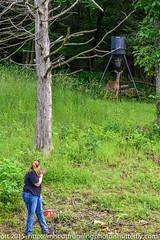 "Unexpected Encounter: ""Hi"" (urimiscott) Tags: usa nikon wildlife doe deer missouri encounters iconium nikonf2870200mmlens nikond750"