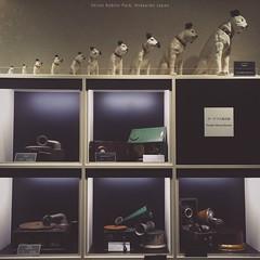 Gramophone Museum @ Shiroi Kobito Park, Hokkaido Japan (hanks studio) Tags: hanks55 malaysia singapore japan hokkaido   asahikawa    asahiyama zoo wildlife panorama cafe harvestor hakodate tram track ropeway otaru mount tengu kanemori red brick warehouse iphoneography striped sapporo lakehillfarm farm tomita flower lavender spring season furano travel survival kit shiroikobitopark gramophone museum