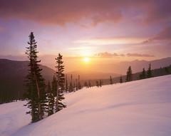 Winter's Warm Glow (AlexBurke) Tags: park winter mountain snow film sunrise landscape outdoors glow hiking large rocky velvia national 4x5 format rmnp colroado