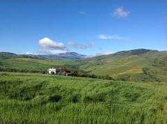 IMG_0165 (gabrieletorretta1) Tags: cereali ventimigliadisicilia hills colline sicilia