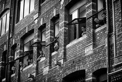 Line of Sight (Just Ard) Tags: man woman window lowpov line brick architecture building faces people person face street photography candid unposed black white mono monochrome bw blackandwhite noiretblanc biancoenero schwarzundweis zwartwit blancoynegro  justard nikon d750 85mm city