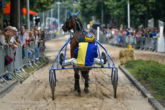 070fotograaf_20160728_059.jpg (070fotograaf, evenementen fotograaf) Tags: harnessracing racing draverij drafsport paardensport paardesport harness paardenmarkt holland netherlands nederland 070fotograaf kortebaandraverij voorschoten 2016 paarden draven kortebaan