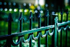 HFF !! Happy Fence Friday !! (Rainer D) Tags: 2015 hff zaun zune berlin deutschland beyondbokeh