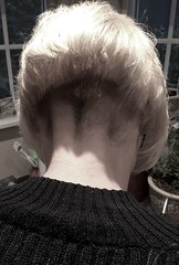 image (Shavednapes) Tags: shavednapes shavednape buzzednape shaved buzzed clippered nape inverted bob concave angled