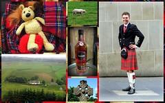 ECOSSE 2016 (LILI 296 ...) Tags: collage kilt whisky plaid paysage maison mouton homme tartan croix nunu bouteille peluche nounours ecosse celte cossais
