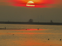 bye (conteluigi66) Tags: tramonto luigiconte laguna burano venezia veneto acqua sunset