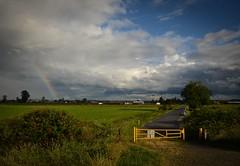 Pitt Meadows BC (Ian Threlkeld) Tags: sky weather clouds landscape rainbow nikon scenery bc britishcolumbia canadian explore pacificnorthwest rainbows westcoast pnw irt nikonphotos pittmeadows beautifulbc canadianlandscapes nikonphotography nikonphoto explorebc mynikonlife