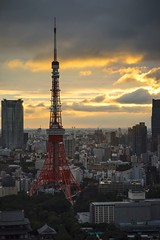 Tokyo Tower (Kyle Pozan) Tags: sunset summer portrait japan skyline clouds zeiss tokyo asia sony tokyotower batis a7r sonya7 sonya7r zeissbatis batis25 batis25mm