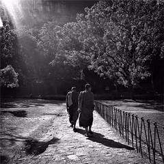 #Hipstamatic #Watts #Aristotle #sigiriya #lion_rock #srilanka #sri_lanka #ceylon #asia #monks #Buddhism #world_heritage #iphone #iphone6s (Bruno Abreu) Tags: instagramapp square squareformat iphoneography uploaded:by=instagram