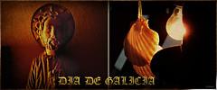 25 de Julio (Franco DAlbao) Tags: francodalbao dalbao lumix composicin composition galicia dadegalicia 25dejulio santiagoapstol santiago sanyago sanjacobo saintjames saintjacques galegos galician gallegos sanjaime santjaume saintiacob dagrande gallaecia mestremateo vieiras veneras concha shell
