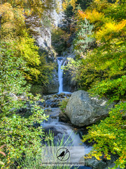 Cossi d'en Batll (Acrocephalus Photography) Tags: catalunya esp hdr highdynamicrangephotography landscape mountain parcnaturaldelescapaleresdelteridelfreser pyrenees ripolls spain water autumn colors fall forest hiking naturallight naturalpark naturalworld nature naturephotography outdoors red river tree trees trekking waterfall setcases es