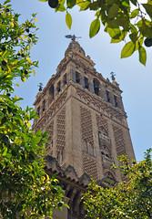 'Giralda y rboles' (EZTD) Tags: eztd eztdphotography eztdphotos photos fotos nikond90 sevilla seville sevilha spain espana espagne spana rboles giralda catedraldesevilla dom tower torre tree baum arbre