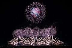 mood of Autumn (peaceful-jp-scenery) Tags: fireworks display summer festival yamagata akagawa tsuruoka        sony 7r a7r ilce7r amount sal1635z variosonnart1635mmf28zassm carlzeiss laea4