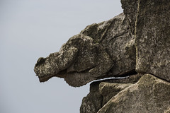Gargoyle (toschi) Tags: islesofscilly england cornwall uk stagnes