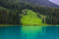 a break in the trees (john dusseault) Tags: emeraldlake yoho bc canada water trees green avalanche mtcarnavon rockies
