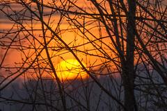 illuminate the sky (i.v.a.n.k.a) Tags: light sunset sky sun sony horizon illuminated alpha ivana hesova