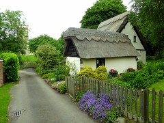 A cottage in Rushden (Jayembee69) Tags: england village cottage thatch hertfordshire herts thatchedcottage rushden