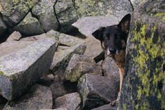IMG_4076.jpg (Backpacking With Bacon) Tags: washington northerncascades hiking mtpilchuck granitefalls unitedstates us