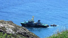 St. John's, NFLD (anng48) Tags: canada newfoundland boat ship stjohns atlanticocean nfld thenarrows