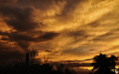 Monsoon Sunset July 16th, 2016 (ELAINE'S PHOTOGRAPHS) Tags: sunsets sun clouds nature landscapes arizona breathe taking