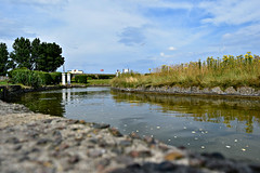Great Yarmouth Waterways (Photography By Haylea) Tags: great yarmouth norfolk uk england water waterways lake stream beautiful