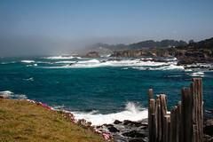 Encroaching (San Francisco Gal) Tags: mcbg fortbragg pacificocean cliff wave sea breaker rock iceplant fog marinelayer fence sky building coast mendocinocoastbotanicalgarden
