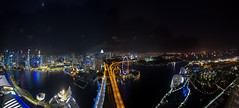 Marina Bay Sands Skygarden (Corey Hamilton) Tags: travel night singapore marinabaysands