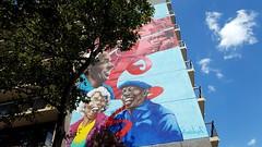 Street Art | Washington, DC (Stephenie DeKouadio) Tags: washingtondc washington dc streetart art artistic dcphotos urbandc urban columbiaheights tree trees colour color colorful dcurban