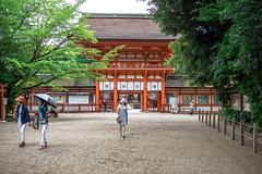 (蔡藍迪) Tags: 50mm 18g japan japanese d600 nikon nidomenokyoto kyoto 京都 日本 nipon 下鴨神社 下鴨 二度目の京都