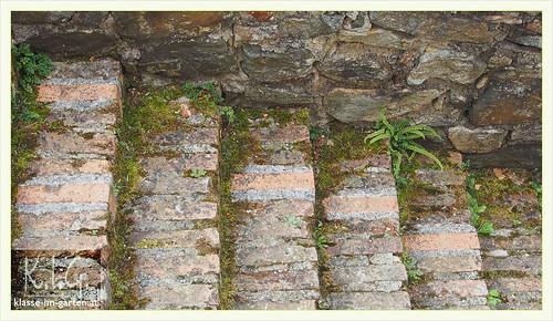 Schallaburg gaerten: alte stufen | 2014-07