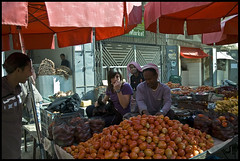 DSC_6594 (Sgaffo) Tags: yemen travelling 20072008 socotra