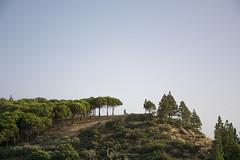 Postboda de Suleica y Juan (M. ngeles Cuenca) Tags: boda postboda reportaje fotogrfico