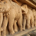 Kelaniya Elephants (IMG_2176b)