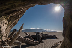 Through the window (leah-nz) Tags: driftwood timber beach sand kapitinz kapiti island outdoors seaside