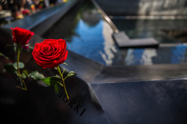 Rose at 9/11 Memorial