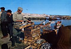 Lagos R-113 ( Portimagem) Tags: portugal patrimnionacional vidaportuguesa pescadores historia algarve lagos