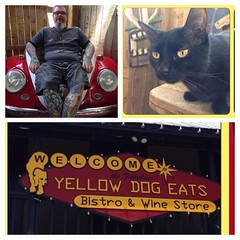 Second time to Yellow Dog Eats Orlando, great pulled pork sammys, resident kitty knows where to eat #yellowdog