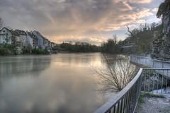 Blick über den Rhein flussabwärts