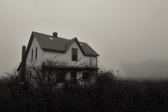 House in the Fog