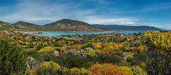 Macchia mediterranea (Tati@) Tags: natura colori maquis isola asinara wildness vegetazione macchiamediterranea
