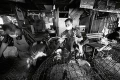 Flickr_Bangkok_Klong Toey Markey-21-04-2015_IMG_9673 (Roberto Bombardieri) Tags: food thailand market tailandia mercato klong toey