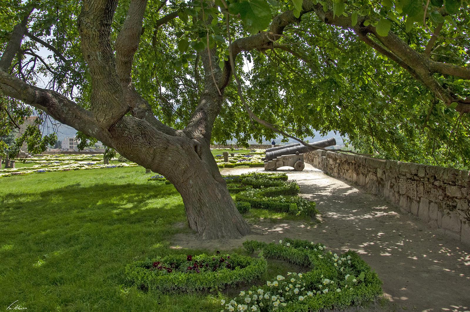 1600-jardim do castelo