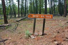 Turn-off to Dorsey Trailhead (Coconino National Forest) Tags: road camping arizona sign forest outdoors unitedstates hiking trail backpacking flagstaff sycamorecanyon coconinonationalforest sycamorecanyonwilderness flagstaffrangerdistrict dorseytrail dorseytrailno7 fr538e fr538g