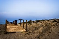 Tra le dune (SDB79) Tags: panorama strada mare dune natura via spiaggia molise camminare percorso petacciato passarella