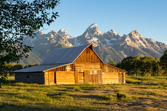 Barn on Mormon Row with Tetons in the Morning (grimeshome) Tags: tetons tetonnationalpark moultonsbarn grandtetonnationalpark teton grandtetonpeak morning barn nature landscape summer peaceful restful cool