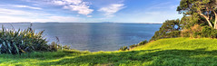 Kennedy Park Castor Bay Auckland (vicmarnz) Tags: hdr panorama coastline cliff auckland castorbay newzealand panoramic