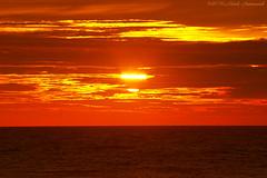 Belgian coast (Natali Antonovich) Tags: belgiancoast wenduine northsea sea nature water landscape sunset sky sun seasideresort seashore seaboard seaside