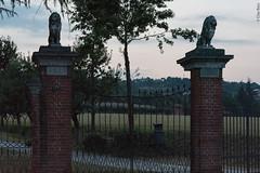 Villa Verrone (Clay Bass) Tags: 12800 nikon saluzzo d750 gate lions natural night statue